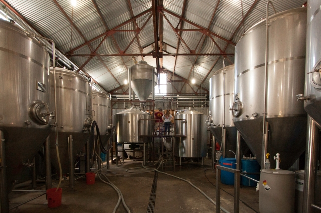Jester King fermentation and bright tanks
